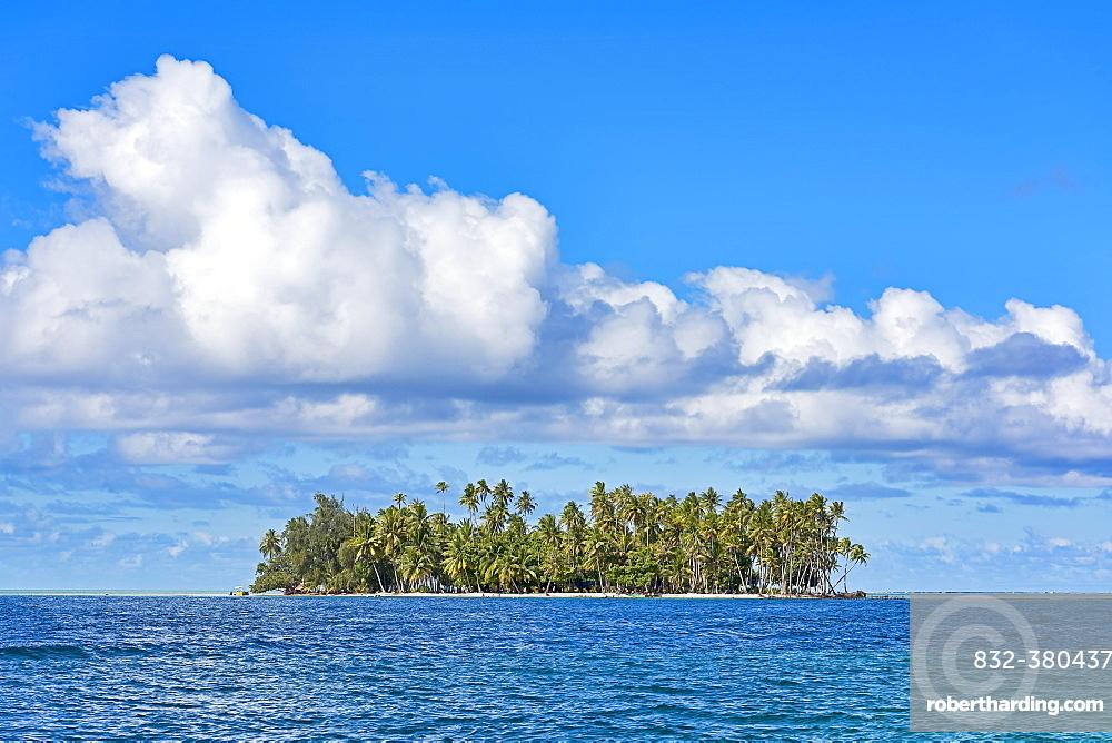 Small deserted island with palm trees, Raiatea, French Polynesia, South Pacific, Oceania