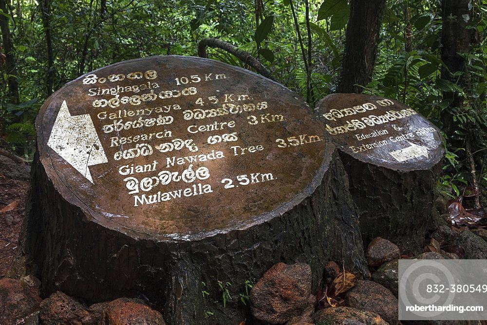 Signpost, Sinharaja Forest Reserve, Sri Lanka, Asia