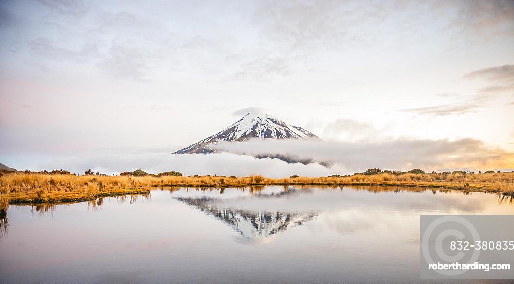 Reflection in Pouakai Tarn, stratovolcano Mount Taranaki or Mount Egmont at dusk, Egmont National Park, Taranaki, North Island, New Zealand, Oceania