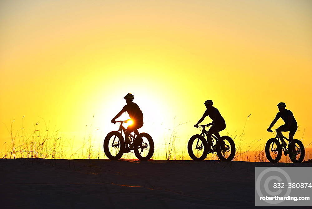 Three cyclists on fatbikes backlit at sunset, Plaat Beach, Nature Reserve, De Kelders, Gansbaai, Western Cape, South Africa, Africa
