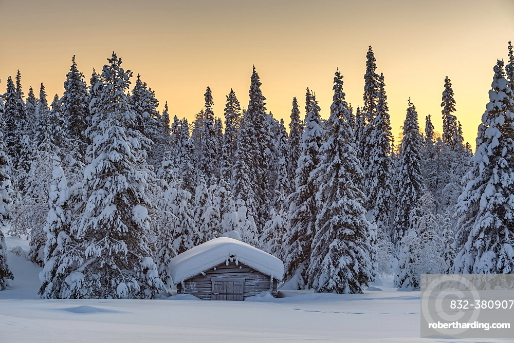 Snow-covered hut in winter landscape, morning atmosphere, Pallastunturi, Pallas-Yllästunturi National Park, Muonio, Lapland, Finland, Europe