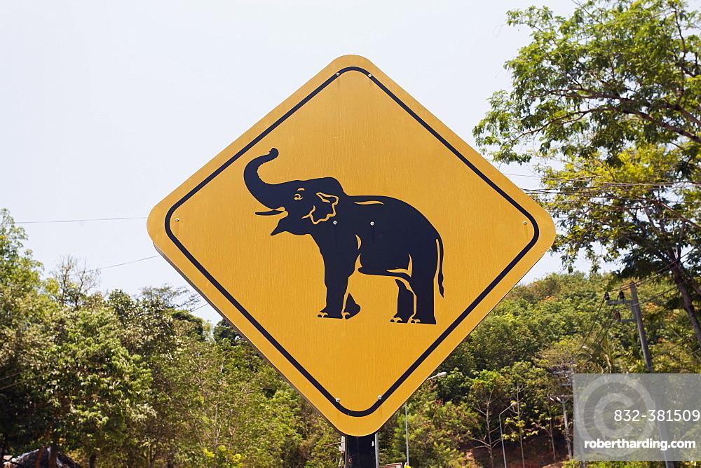 Road sign caution elephants, elephant camp, Phuket Province, Thailand, Asia