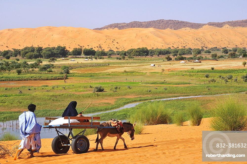 Donkey cart being pushed through the soft sand, Moudjeria, Tagant region, Mauritania, Africa