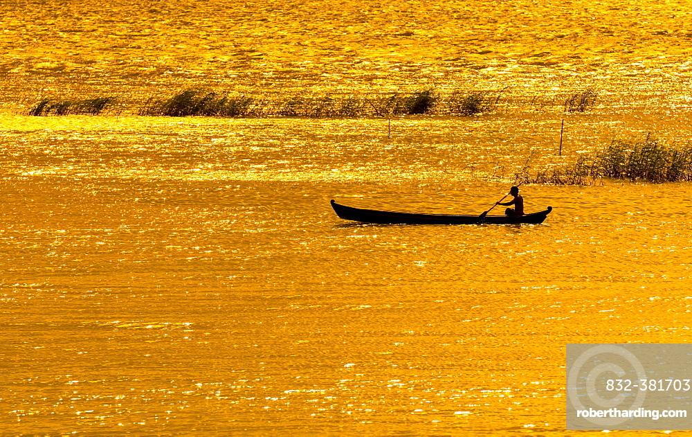 Man paddling boat on River Ayeyarwady or Irrawaddy, evening mood golden light, Mandalay, Mandalay Division, Myanmar, Asia