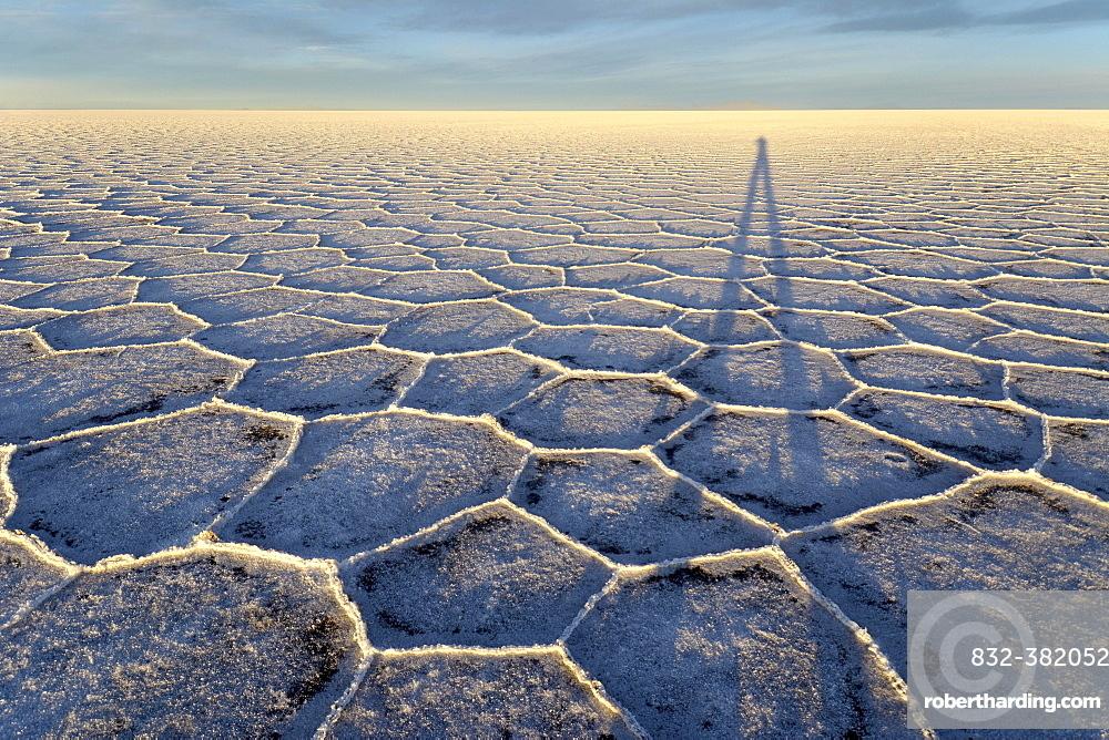Photographer's shadow on honeycomb structure of Salar de Uyuni, salt flat, morning light, Altiplano, Lipez, Bolivia, South America