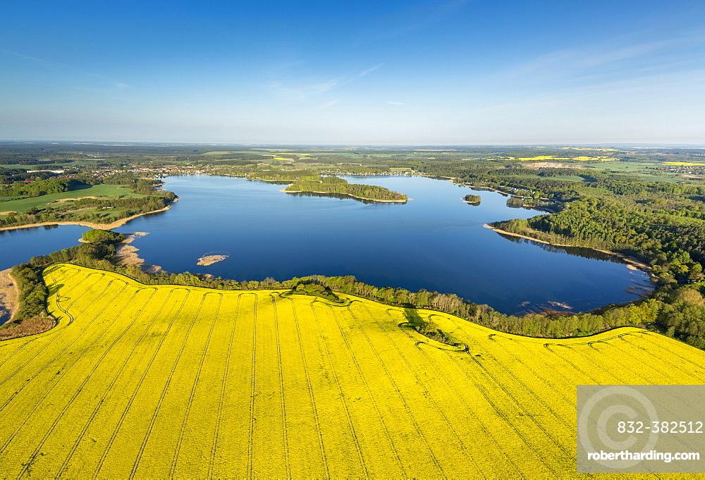 Krakower Seenlandschaft, lakeland nature reserve, with rape fields in full bloom, Kuchelmiss, Mecklenburg Lake District, Mecklenburg-Western Pomerania, Germany, Europe