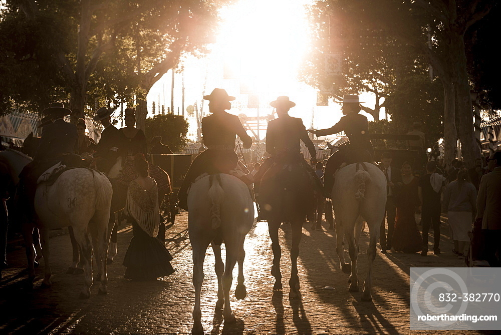 Rider on horses with traditional clothes, back light, Feria de Abril, Seville, Andalucia, Spain, Europe