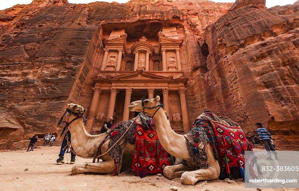 Dromedaries in front of the Pharaoh's treasure house carved out of rock, facade of the Al-Khazneh treasure house, Khazne Faraun, mausoleum in the Nabataean city of Petra, near Wadi Musa, Jordan, Asia