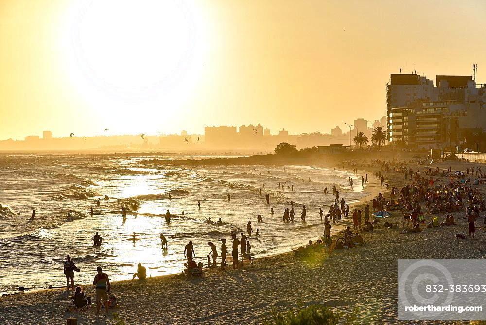 Many people bathing on the beach at sunset, beach Rambla, Montevideo, Uruguay, South America