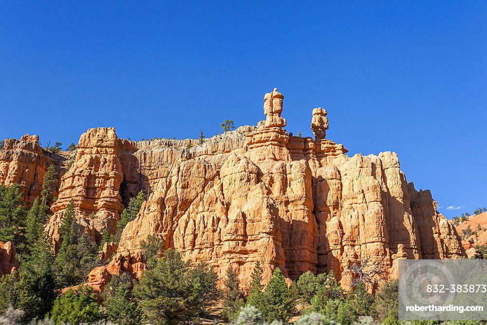 Amazing rock formation, Bryce Canyon National Park, Utah, USA, North America