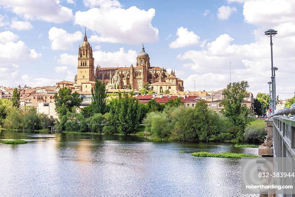 Tormes river with cathedral, Salamanca, Castile and Leon, Spain, Europe