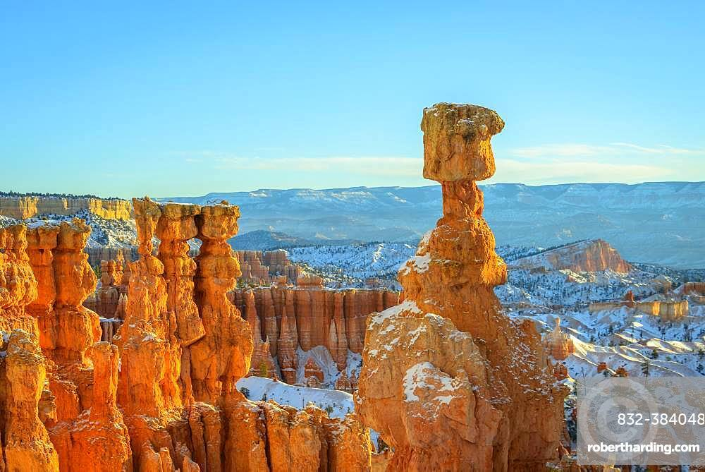 Rock formation Thors Hammer, morning light, bizarre snowy rock landscape with Hoodoos in winter, Navajo Loop Trail, Bryce Canyon National Park, Utah, USA, North America