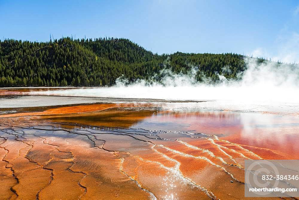 Wave structure, coloured mineral deposits at the edge of the hot steaming spring, Grand Prismatic Spring, Midway Geyser Basin, Yellowstone National Park, Wyoming, USA, North America