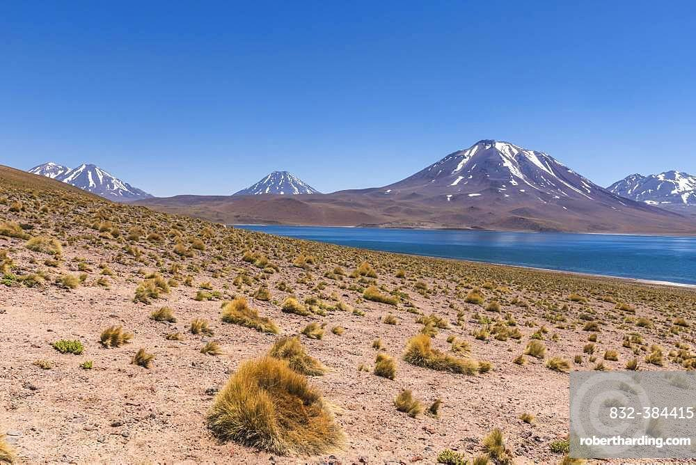 Lagoon, Laguna Miscanti with volcano Chiliques and Cerro Miscanti, Altiplano, Region de Antofagasta, Chile, South America