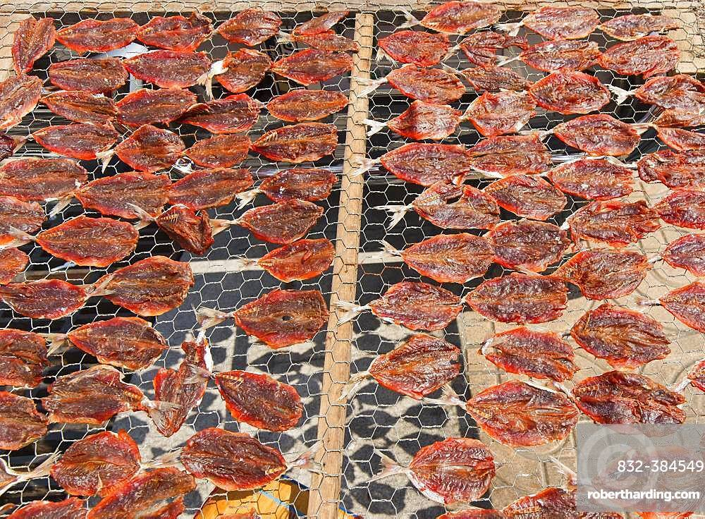 Halved raw fish dries in the sun on a grid, Bangkok, Thailand, Asia