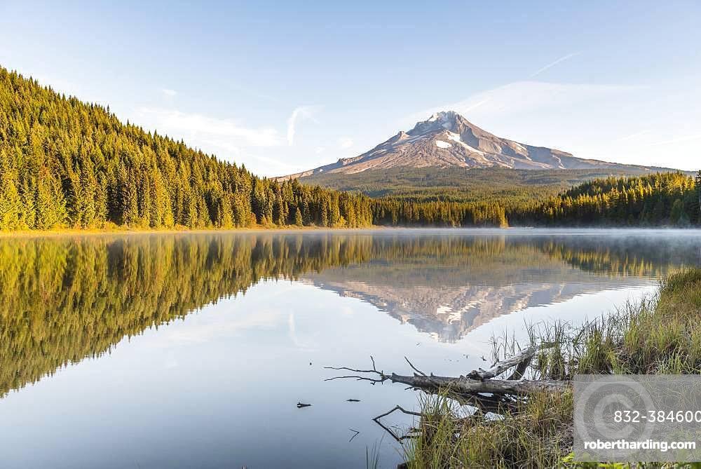 Reflection of the volcano Mt. Hood in Lake Trillium Lake, morning mood, Oregon, USA, North America