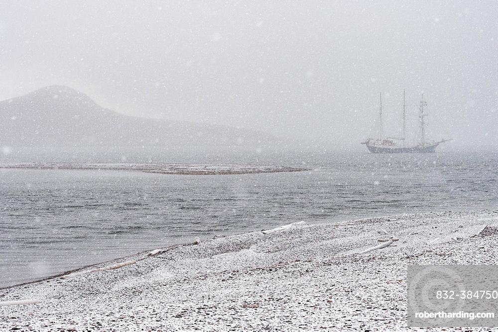 Barkentine Antigua in the snow drift, Snaddvika, Murchisonfjord, Nordaustland, Spitsbergen Archipelago, Svalbard and Jan Mayen, Norway, Europe