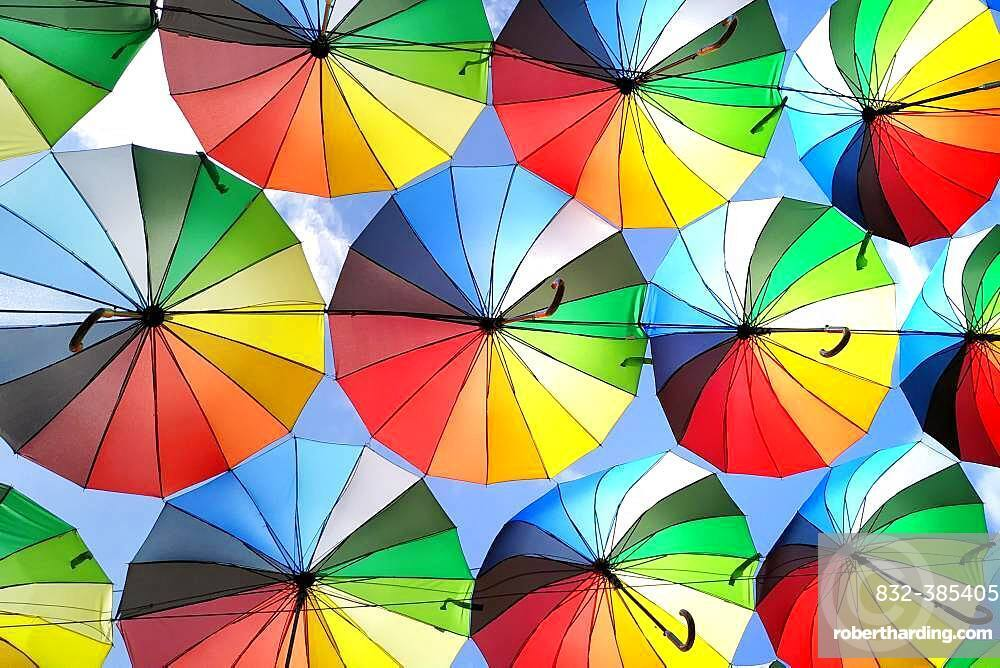 Street decoration, lots of umbrellas coloring the sky, Odessa, Ukraine, Europe