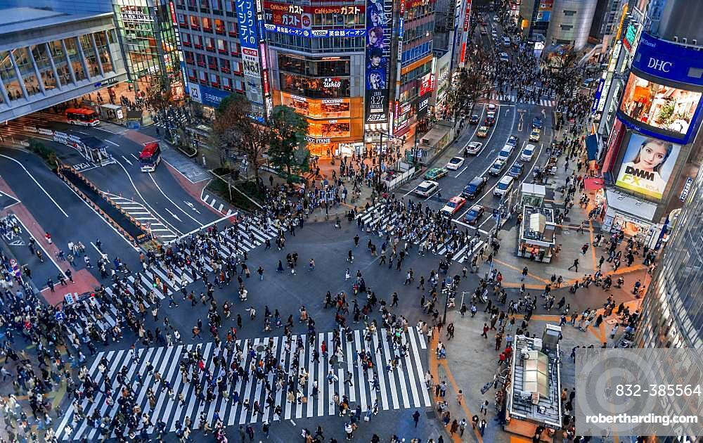 Shibuya Crossing from above, crowds of people at intersection illuminated with street lights and colorful signs, illuminated advertising in the evening, railway station Shibuya, Shibuya, Udagawacho, Tokyo, Japan, Asia