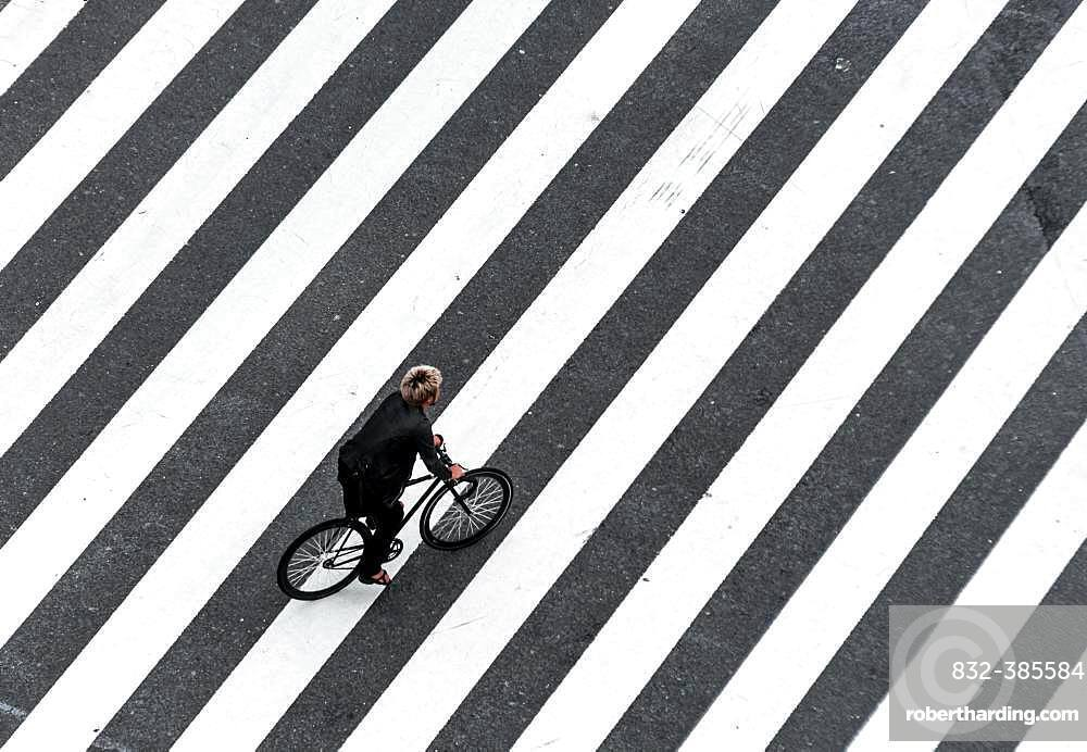 Shibuya Crossing, Single Bicycle Crosses Crosswalk, Shibuya, Udagawacho, Tokyo, Japan, Asia