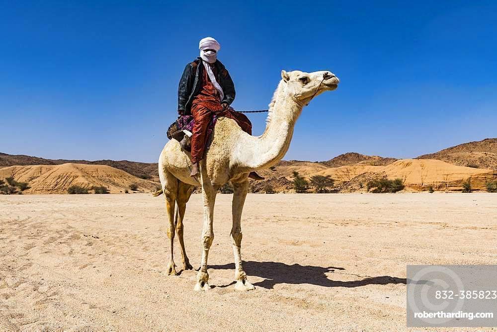 Tuareg riding on his arabian camel, near Tamanrasset, Algeria, Africa