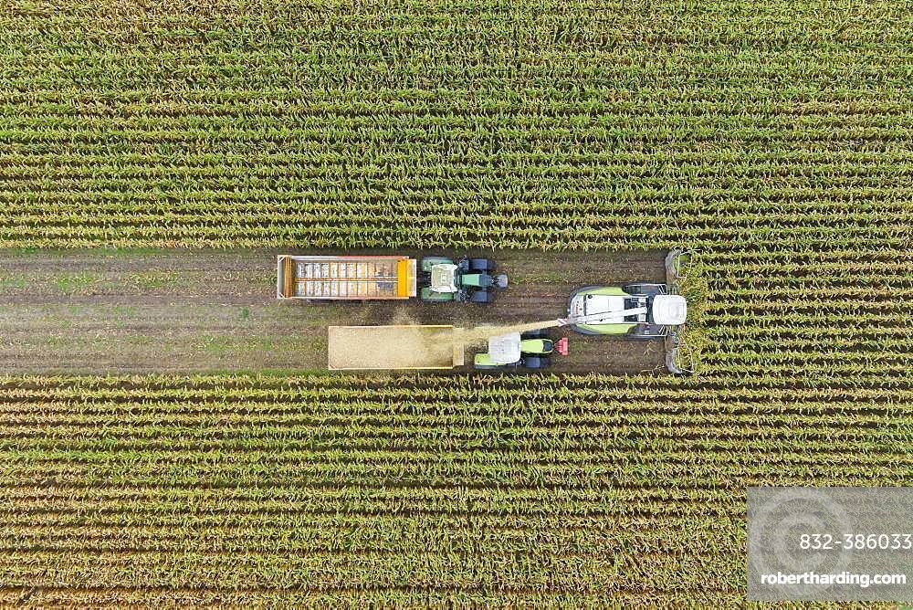 Aerial view, maize chopper and tractor with trailer at the maize harvest, Germany, Europe