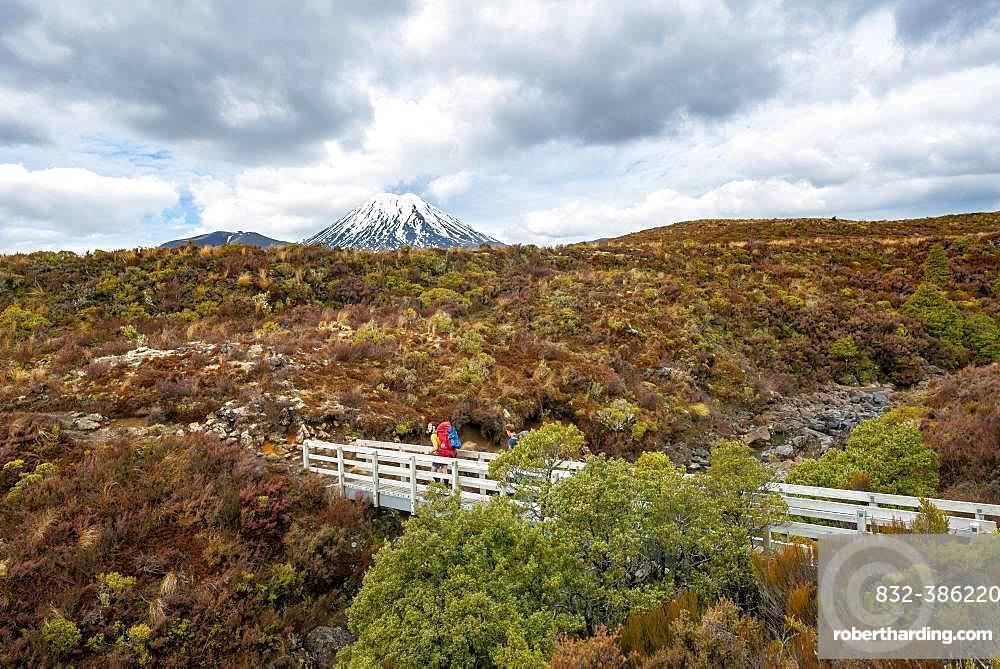 Hikers on bridge, hiking trail Tongariro Northern Circuit, Great Walk, volcano Mount Tongariro and Mount Ngauruhoe, Tongariro National Park, North Island, New Zealand, Oceania