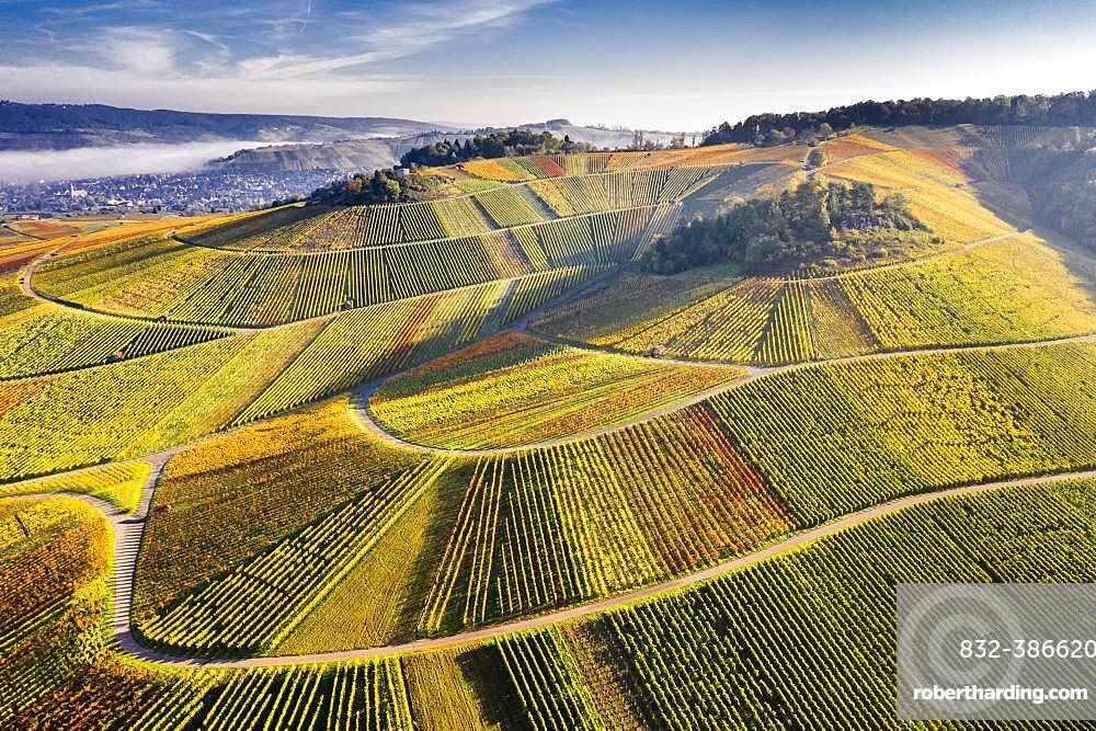 Drone shot, vineyards in autumn, near Struempfelbach, Remstal, Baden-Wuerttemberg, Germany, Europe