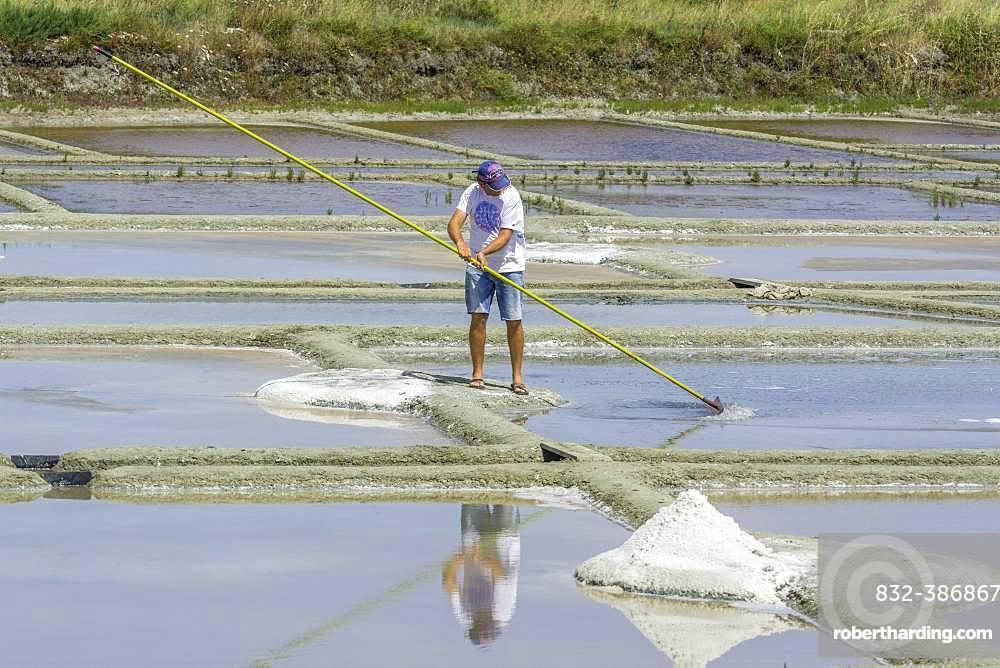 Man skimming salt, Salines de Guerande, Guerande, Departement Loire-Atlantique, France, Europe