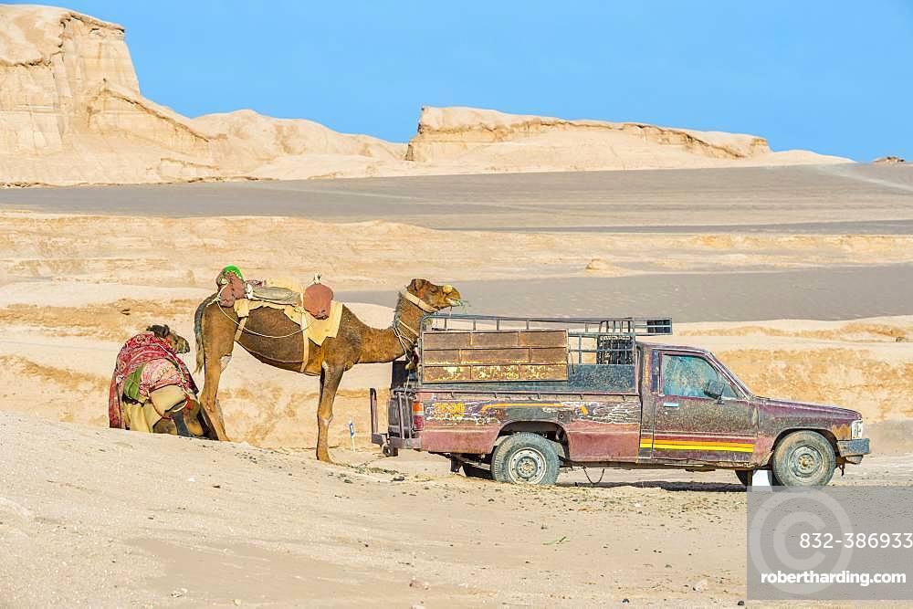 Dasht-e Lut, World hottest place, Car and Dromedary, Kerman Province, Iran, Asia