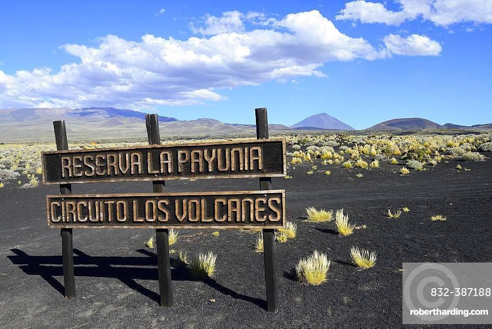 Shield Cirquito los Vulcanes, Payun Volcano in the background, Reserva La Payunia, Mendoza Province, Argentina, South America