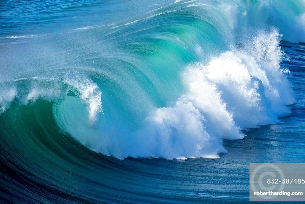 Wave, Fuerteventura, Canary Islands, Spain, Europe