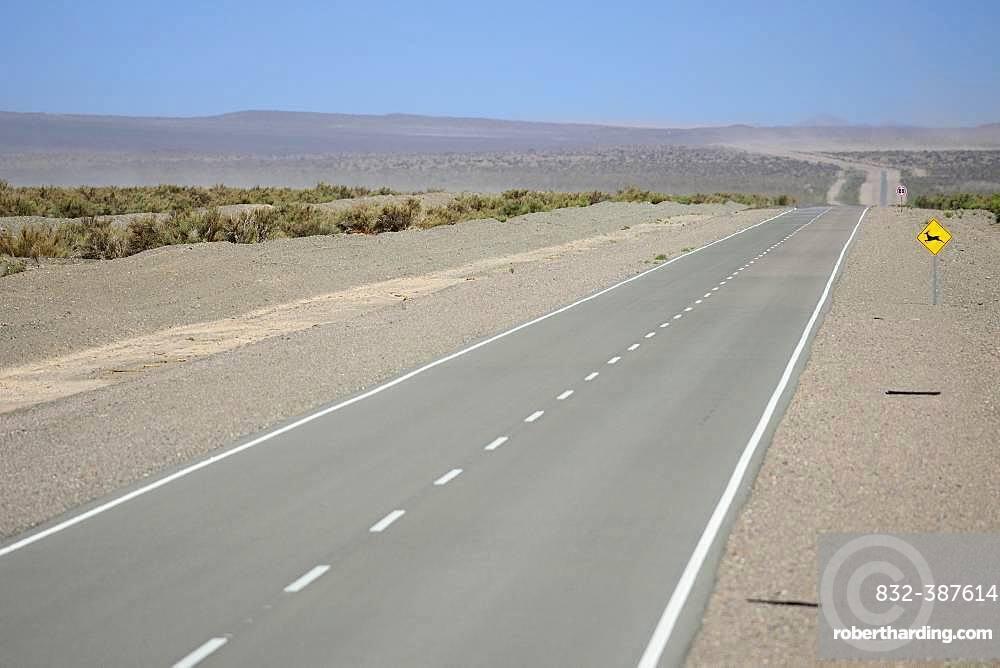 Lonely road through the plateau near Uspallata, Mendoza province, Argentina, South America