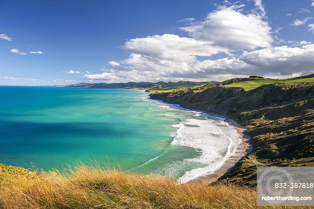 Castlepoint coastline, hilly landscape, Masterton, Wellington, New Zealand, Oceania
