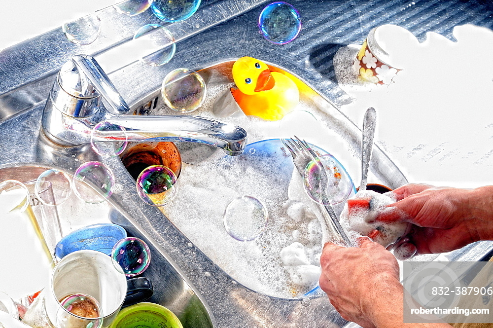 Man hands, man washes dishes, Germany, Europe