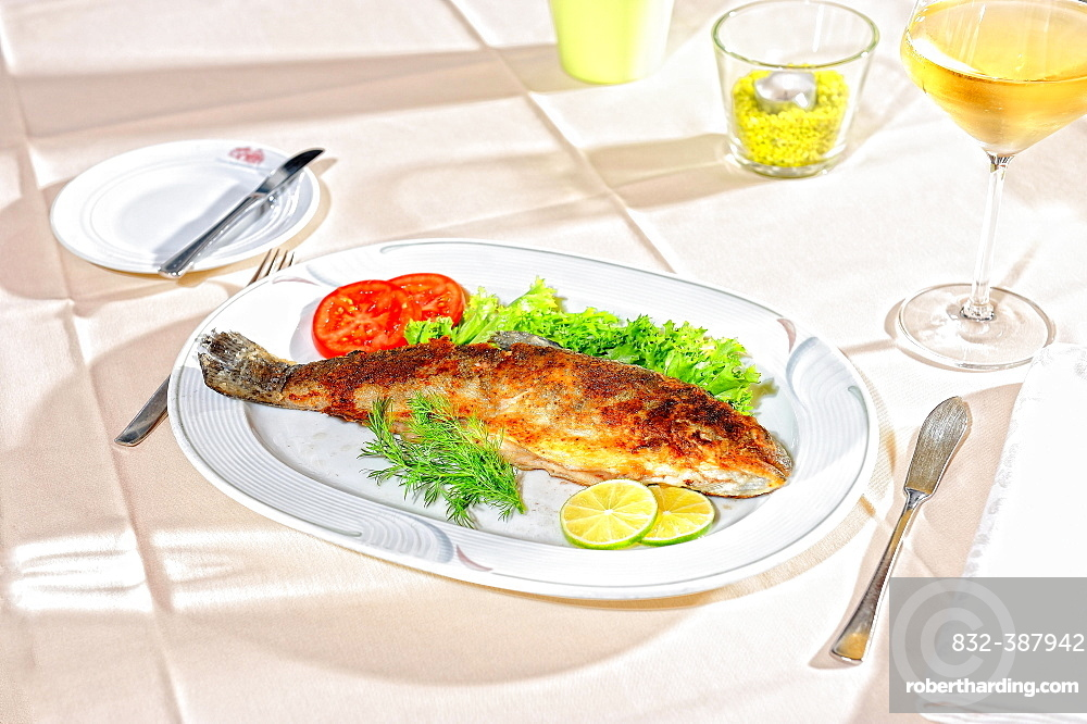 Trout Muellerin, served on white plate, main course, Germany, Europe