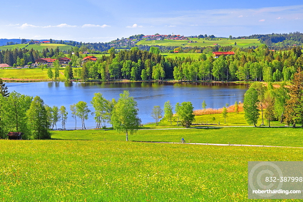 Early landscape with Lake Bayersoiener See, in the back village Schoenberg, Bad Bayersoien, Upper Bavaria, Bavaria, Germany, Europe