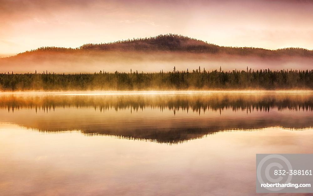 Autumnal fog atmosphere on the lake shore in the evening light, Jokkmokk, Norrbottens laen, Sweden, Europe