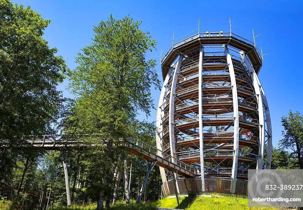 Observation tower at the tree top path Salzkammergut am Gruenberg, Gmunden, Salzkammergut, Upper Austria, Austria, Europe