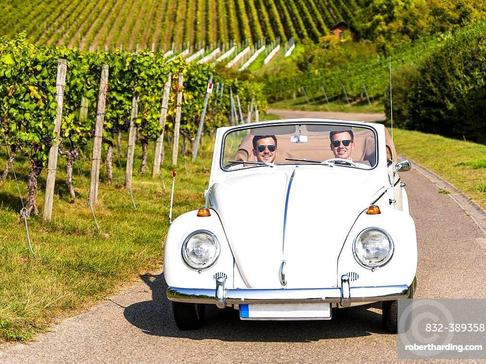 Businessmen in a classic car, driving through vineyards, Remstal, Baden-Wuerttemberg, Germany, Europe