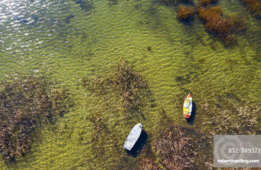 Boats in the reed belt at Mondsee, drone photo, aerial photo, Mondseeland, Salzkammergut, Upper Austria, Austria, Europe