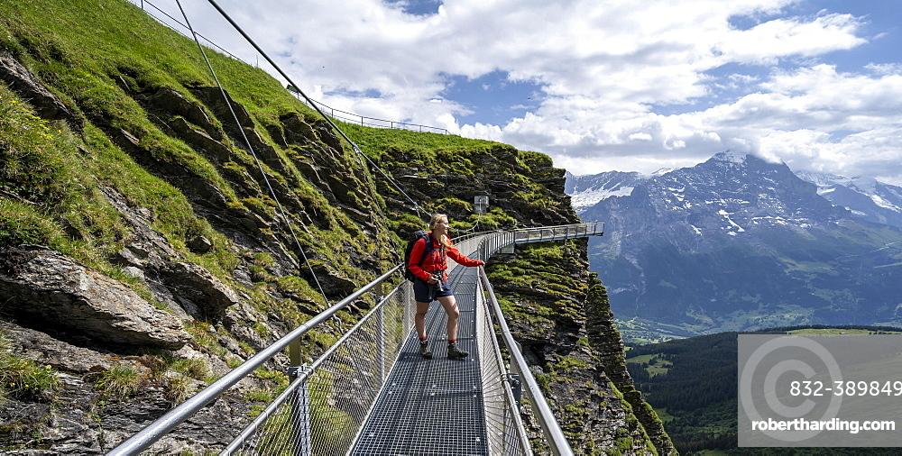 Hiker on a secured hiking trail on the slope, First, Jungfrau Region, Grindelwald, Bern, Switzerland, Europe