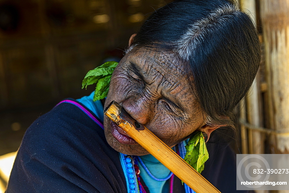 Chin woman with spiderweb tattoo blowing a flute with her nose, Kanpelet, Chin state, Myanmar, Asia