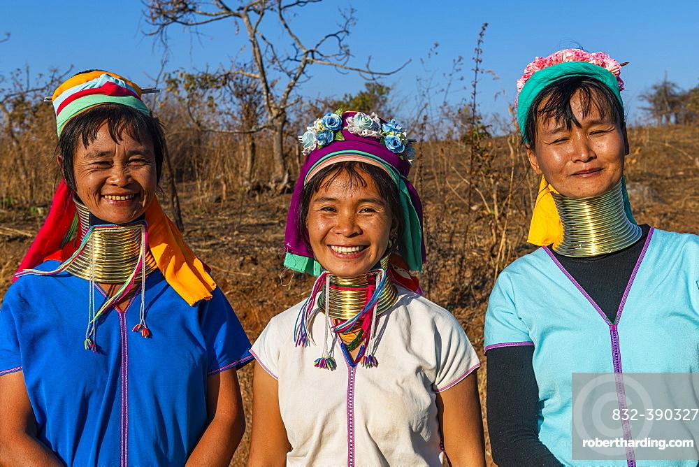 Laughing three Padaung women, Loikaw area, Kayah state, Myanmar, Asia