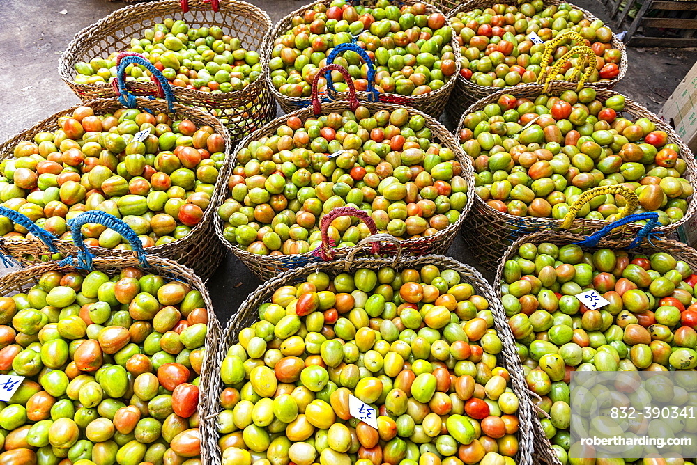 Tomatos for sale, Myitkyina, Kachin state, Myanmar, Asia