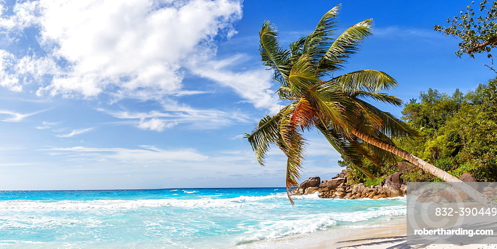 Anse Georgette travel travel landscape beach holiday island Praslin palm panorama sea, Praslin, Seychelles, Africa