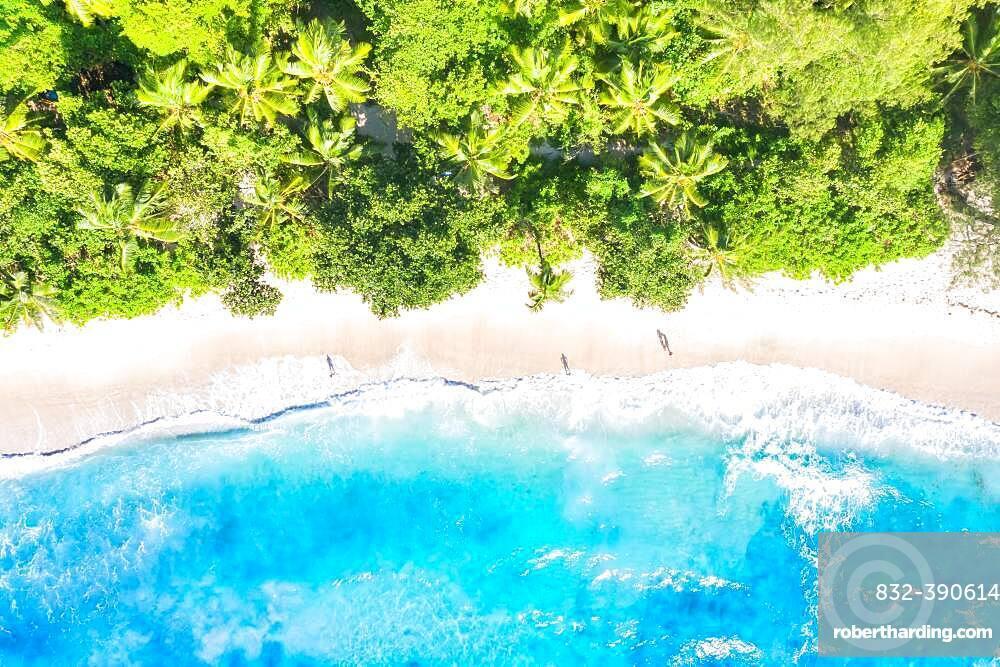 Beach nature paradise drone shot bird's eye view on Mahe island, Seychelles, Africa