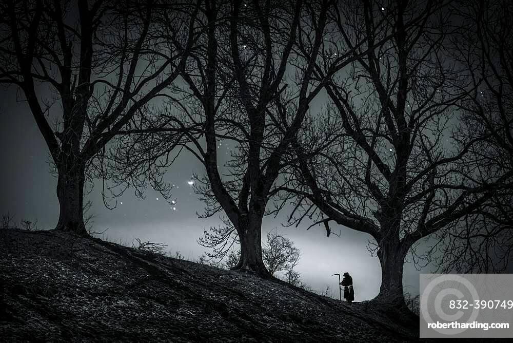 Man with scythe under tree with starry sky, Oberguenzburg, Ostallgaeu, Bavaria, Germany, Europe
