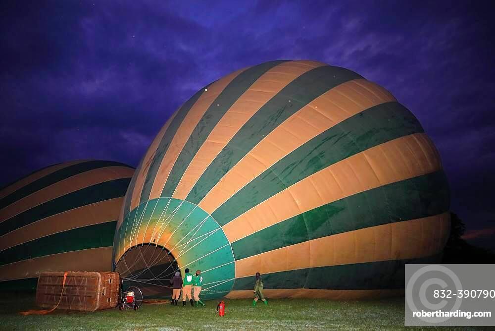 Hot air balloon being filled, inflated, blue hour, Masai Mara National Reserve, Kenya, Africa