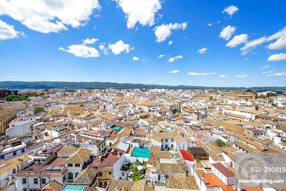 View over the houses in the city center, Cordoba, Andalusia, Spain, Europe